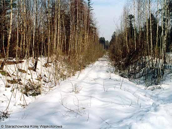 szlak za Brukowańcem